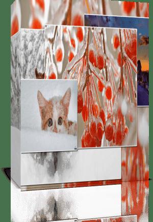 Универсальные стили, (зимние) в подарок!, для Proshow Produser 5 - 6