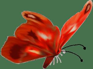 Футаж летний Бабочки скачать бесплатно HD 1080