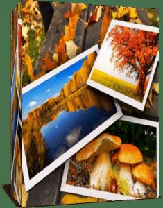 Осень. Проект и стили для Proshow Producer