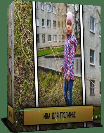 Полина сажает деревья. Стили и переходы в подарок