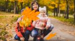Фоновый осенний футаж